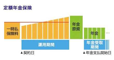 定額年金保険 イメージ図