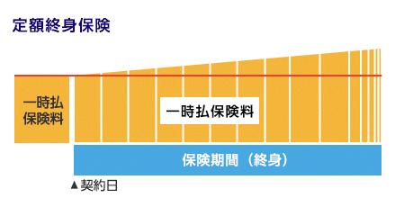 一時払い終身 イメージ図