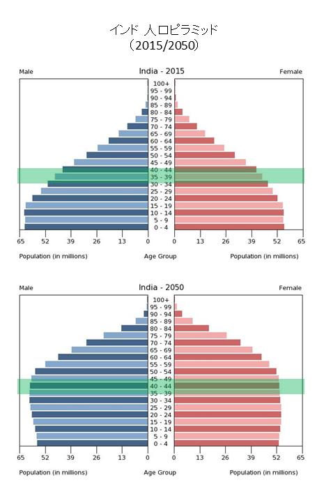 population_pyramid_india