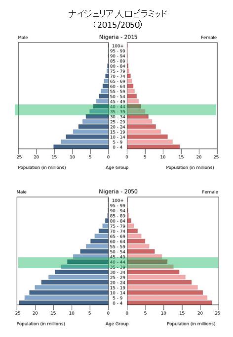 人口ピラミッドナイジェリア